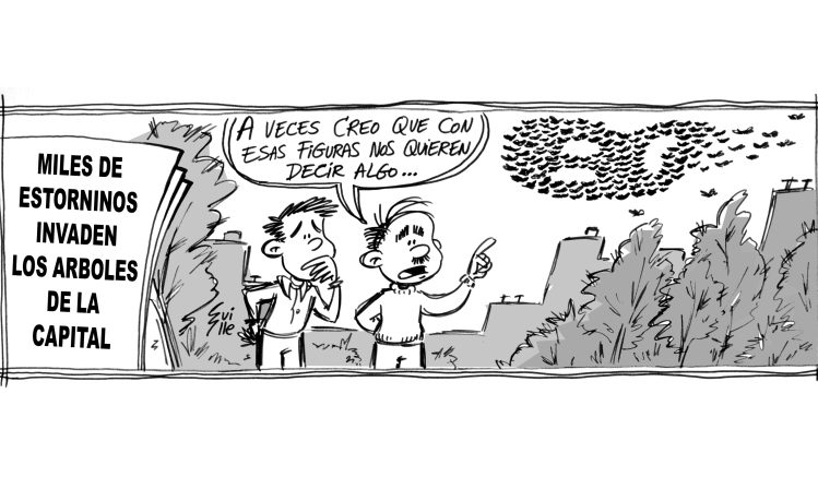 Tiras Antiguas Heraldo 10 1